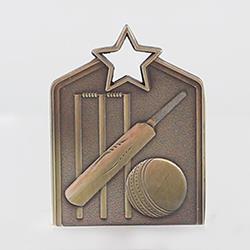 Shield Medal Cricket 60mm Gold