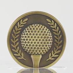 Gold Golf Coin in Case