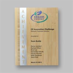 Eco Series Plaques – Bamboo Achievement 230mm